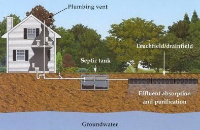 Locating Amp Digging Lilly S Septic Services